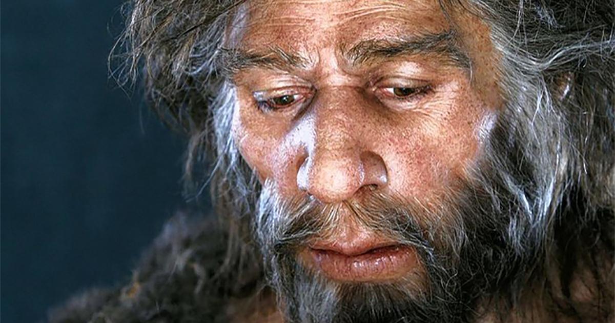 Сапиенстен саналылау неандерталь - на bugin.kz