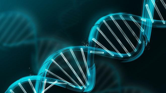 Әкенің ақылы қызға, ананың ақылы ұлға беріледі: Генетиканың ғажайыптары қандай? - на health.bugin.kz