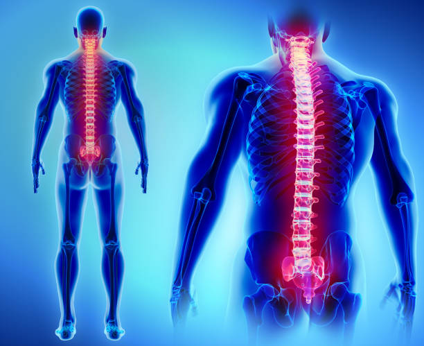 6 кеңес: Беліңіз ауырмасын десеңіз - на health.bugin.kz