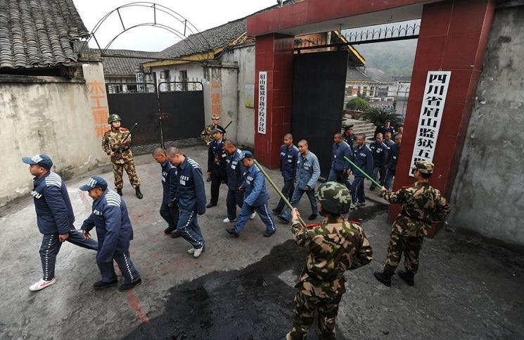 Қытайдағы вирус: концлагерьдегі мұсылмандар жаппай қырылуы мүмкін - на politic.bugin.kz