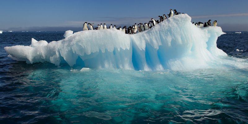 Антарктикада +20 °С:  Ірі қалалар су астында қалуы мүмкін - на bugin.kz