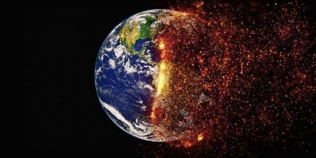 Жаңа Зеландияда 500 мыңнан астам мидия қырылып қалды - на bugin.kz