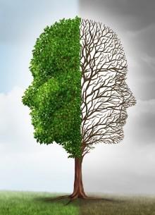 Экологияға зиянын тигізетін факторлар - на Bugin.kz