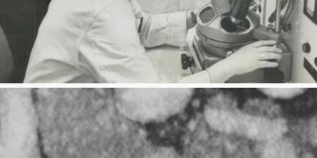 Короновирусты алғаш тапқан ғалым әйел - на bugin.kz